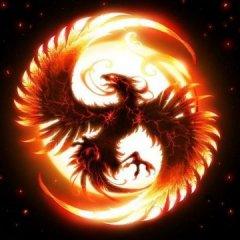 PhoenixIsLife